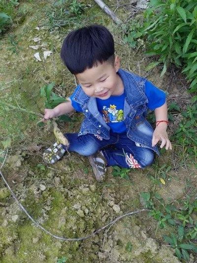 蔬菜藤蔓篱笆主题墙幼儿园
